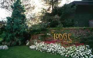 Lodge-at-Torrey-Pines-Tree-Care